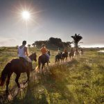 Horse riding is one of several activities offered near the town of St Lucia.