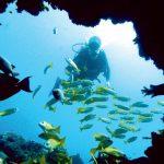 Scuba diving in Rocktail bay