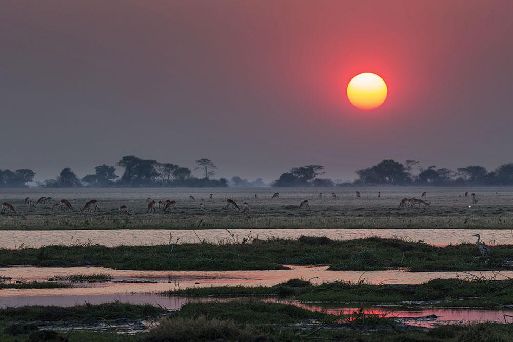 A stunning African sunset over Kafue's plains